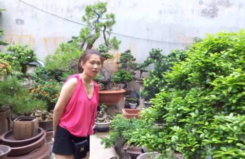 La place des femmes dans le bonsai
