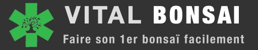 Vital Bonsai